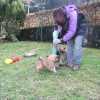 7_woche2_083-a_small_20121003_1421890519
