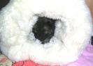 5_woche_067-a_small_20121003_2039204522